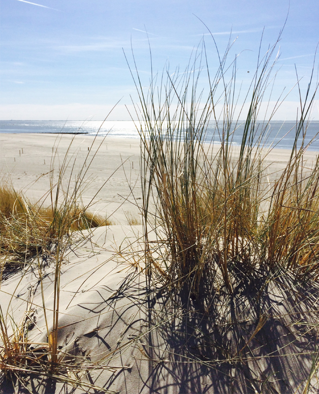 beachpart